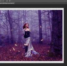 Einführung und Tricks mit Photoshop - Online Workshop
